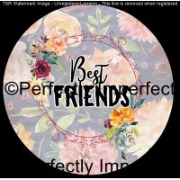 21 best friends floral car coaster1